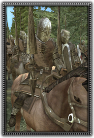 Crusader Knights